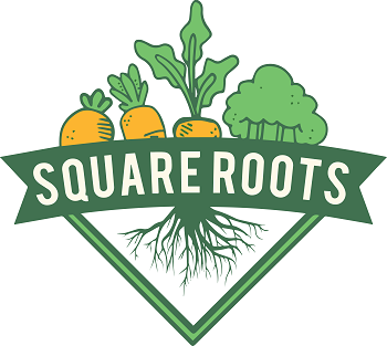 Square Roots by Enactus, Saint Mary's University and Square Roots Sackville, Nova Scotia offer ten good pounds of root vegetables and apples bundles for $5 or $10 per bundle. Social Market is thrilled to offer a Square Roots table at the next Social Market in Beaver Bank, Nova Scotia at Brown Hall at 351 Beaver Bank Road on March 30 from 9:00 a.m. to 2 p.m. Every one is welcome.